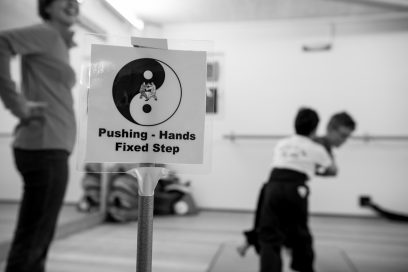 Intensivtraining – Pushing Hands 24.2.2018